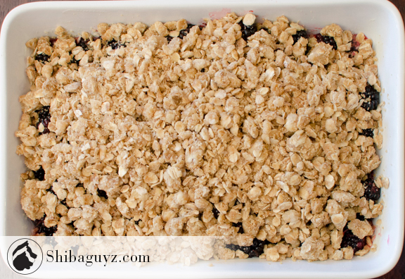 Cookin' With The Shibaguyz – Freeberry Crumble